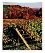 Grapevines In Vineyard, Traverse City Fleece Blanket