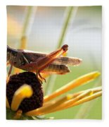 Grasshopper Antena Up Fleece Blanket