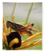Grasshopper Antenna Down Fleece Blanket