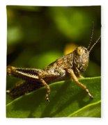 Grasshopper Macro Fleece Blanket