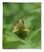 Grasshopper Portrait Fleece Blanket