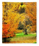 Grassy Autumn Road Fleece Blanket