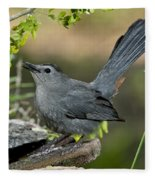 Gray Catbird Drinking Fleece Blanket