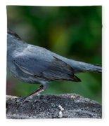 Gray Catbird Dumetella Carolinensis Fleece Blanket