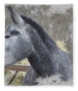 Old Gray Fleece Blanket