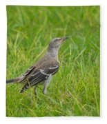 Gray-eyed Catbird II Fleece Blanket