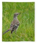 Gray-eyed Catbird Fleece Blanket