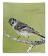 Gray Flycatcher Fleece Blanket