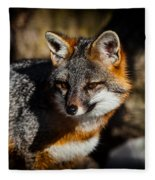 Gray Fox Fleece Blanket