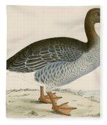 Gray Lag Goose Fleece Blanket