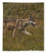 Gray Wolf Hunting Fleece Blanket
