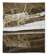 Gray Wolf Reflection Fleece Blanket
