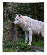 Gray Wolf White Morph Fleece Blanket