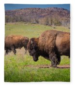 Grazing Bison Fleece Blanket