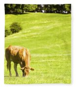 Grazing Cows Fleece Blanket
