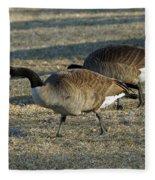 Grazing Geese Fleece Blanket