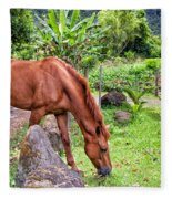 Grazing In Paradise Fleece Blanket