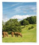 Grazing Summer Cows Fleece Blanket
