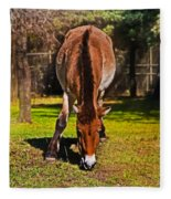 Grazing With An Attitude Fleece Blanket