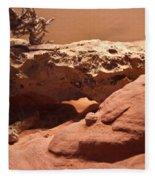 Great Basin Rattlesnake Fleece Blanket