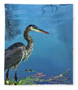 Great Blue Along The Canal Fleece Blanket