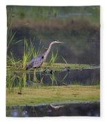 Great Blue Heron At Down East Maine Wetland Fleece Blanket