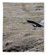 Great Blue Heron Flight Fleece Blanket