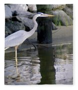 Great Blue Heron - Mealtime Fleece Blanket