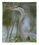 Great Blue In The Reeds Fleece Blanket