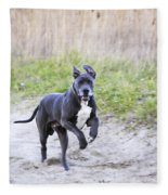 Great Dane Fleece Blanket