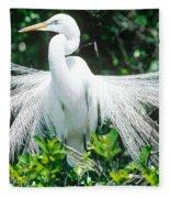 Great Egret Displaying Breeding Plumage Fleece Blanket