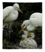 Great Egret Family 2 Fleece Blanket
