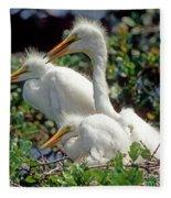 Great Egrets Fleece Blanket
