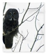 Great Grey Owl On The Lookout Fleece Blanket