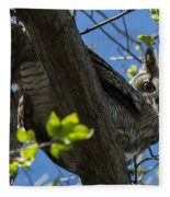 Great Horned Owl 5 Fleece Blanket