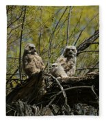 Great Horned Owlets 1 Fleece Blanket