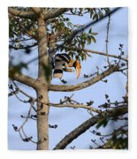Great Indian Hornbill Fleece Blanket