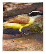 Great Kiskadee Fleece Blanket