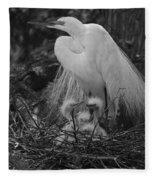 Great White Egret Mom And Chicks In Black Ans White Fleece Blanket