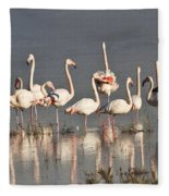 Greater Flamingos At Laguna De La Fuente De Piedra Fleece Blanket