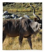 Greater Kudu Grazing Fleece Blanket