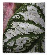 Green And Pink Caladiums Fleece Blanket