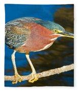Green-backed Heron Fleece Blanket