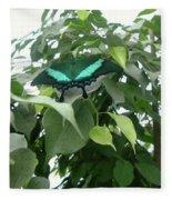 Green Banded Butterfly Fleece Blanket