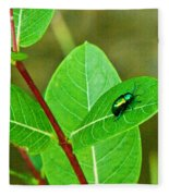 Green Beetle Foraging Fleece Blanket
