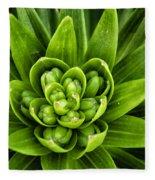 Green Buds Fleece Blanket