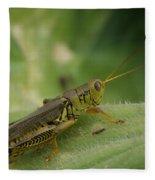 Green Closeup Grasshopper Fleece Blanket