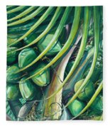 Green Coconuts  2  Fleece Blanket