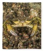 Green Crab Fleece Blanket