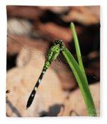 Green Dragonfly On Grass Square Fleece Blanket